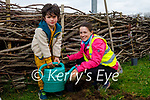 Helping plant a tree in Spa on Saturday morning were Finn and Linda O'Driscoll.