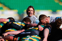 13th March 2021; Franklin's Gardens, Northampton, East Midlands, England; Premiership Rugby Union, Northampton Saints versus Sale Sharks; Faf de Klerk of Sale Sharks shouts instructions at a scrum