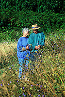 Senior couple walking and picking wild flowers.