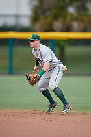 Dartmouth Big Green second baseman Sean Sullivan (4) during a game against the USF Bulls on March 17, 2019 at USF Baseball Stadium in Tampa, Florida.  USF defeated Dartmouth 4-1.  (Mike Janes/Four Seam Images)