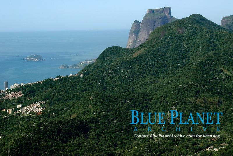 Tijuca National Forest Park with Gavea Rock on background, Rio de Janeiro, Brazil