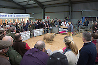 East Of England Smithfield Festival 2016<br /> Picture Tim Scrivener 07850 303986<br /> ….covering agriculture in the UK….