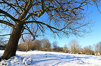 JAN 25 Wintry Scenes in Bedford