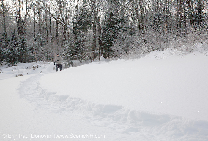 Man snowshoeing along the Swift River in the White Mountain National Forest of  New Hampshire USA during the winter months.