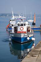 Europe/France/Bretagne/56/Morbihan/Golfe du Morbihan/Ile-Aux-Moines: débarcadère des vedettes au Port du Lério