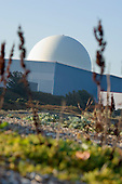 Vegetation on the shingle beach below the dome of the pressurised water reactor at Sizewell B nuclear power station, Suffolk.