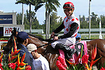 February 07, 2015: Souper Colossal (KY) with jockey Joel Rosario on board wins the Texas Glitter Stakes at Gulfstream Park in Hallandale Beach, Florida.    Liz Lamont/ESW/CSM