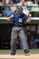 Home plate umpire R.J. Thompson calls a batter out on strikes at Knights Castle April 9, 2009 in Fort Mill, South Carolina. (Photo by Brian Westerholt / Four Seam Images)