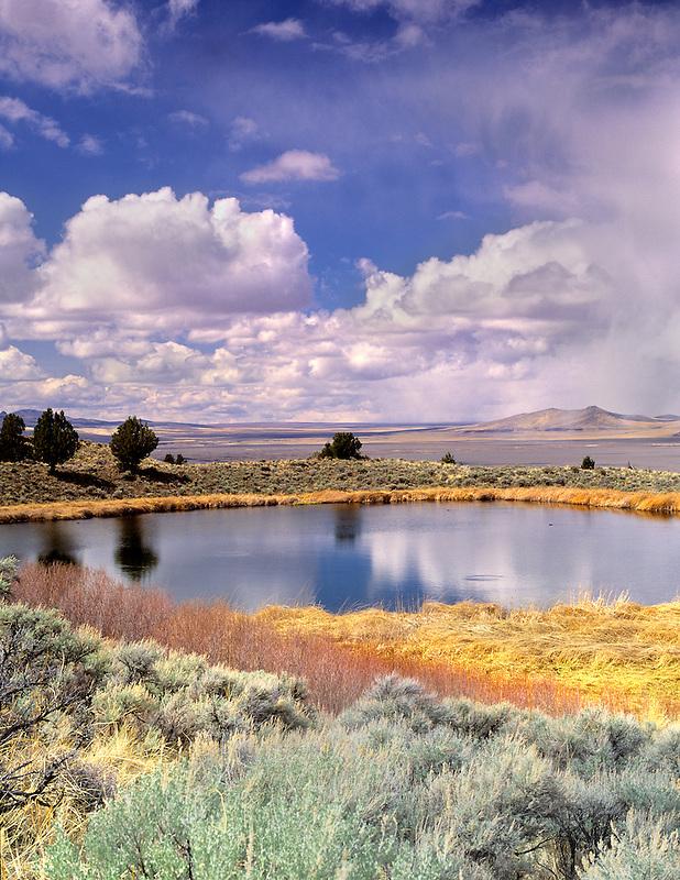 Small pond on Hart Mountain. Oregon.