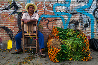 A Mexican flower market vendor sell piles of marigold flowers (Flor de muertos) for Day of the Dead festivities in Oaxaca, Mexico, 30 October 2019. Day of the Dead (Día de Muertos), a religious holiday combining the death veneration rituals of Pre-Hispanic cultures with the Catholic practice, is widely celebrated throughout all of Mexico. Based on the belief that the souls of the departed may come back to this world on that day, people gather together while either praying or joyfully eating, drinking, and playing music, to remember friends or family members who have died and to support their souls on the spiritual journey.