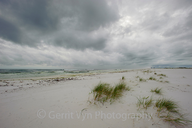 Small dunes and beach composed of white sand. Gulf Islands National Seashore, Florida. June.