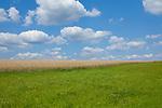 Europa, DEU, Deutschland, Baden-Wuerttemberg, Odenwald, Neckar-Odenwald-Kreis, Typische Landschaft im Sommer, Cumuluswolken, Natur, Umwelt, Landschaft, Jahreszeiten, Stimmungen, Landschaftsfotografie, Landschaften, Landschaftsphoto, Landschaftsphotographie, <br /> <br /> [Fuer die Nutzung gelten die jeweils gueltigen Allgemeinen Liefer-und Geschaeftsbedingungen. Nutzung nur gegen Verwendungsmeldung und Nachweis. Download der AGB unter http://www.image-box.com oder werden auf Anfrage zugesendet. Freigabe ist vorher erforderlich. Jede Nutzung des Fotos ist honorarpflichtig gemaess derzeit gueltiger MFM Liste - Kontakt, Uwe Schmid-Fotografie, Duisburg, Tel. (+49).2065.677997, ..archiv@image-box.com, www.image-box.com]