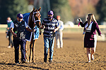 November 7, 2020 : Monomoy Girl, ridden by Florent Geroux, wins the Longines Distaff on Breeders' Cup Championship Saturday at Keeneland Race Course in Lexington, Kentucky on November 7, 2020. Wendy Wooley/Breeders' Cup/Eclipse Sportswire/CSM