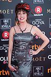 Pilar Ordonez attends red carpet of Goya Cinema Awards 2018 at Madrid Marriott Auditorium in Madrid , Spain. February 03, 2018. (ALTERPHOTOS/Borja B.Hojas)