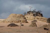Wind erosie. Mungo National Park, Australië