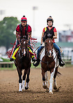 LOUISVILLE, KY - APRIL 30: Kentucky Derby favorite, Classic Empire jogs win exercise rider Martin Rivera aboard at Churchill Downs on April 30, 2017 in Louisville, Kentucky. (Photo by Alex Evers/Eclipse Sportswire/Getty Images)