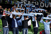 22nd May 2021, Melbourne, Australia;  Melbourne City fans during the Hyundai A-League football match between Melbourne City FC and Central Coast Mariners at AAMI Park in Melbourne, Australia.