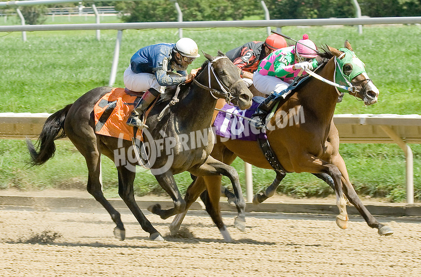 Purr Din Alice winning at Delaware Park on 8/23/11.