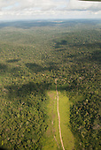 Novo Progresso, Para State, Amazon, Brazil. Aerial view of deep, thick forest with a track, deforested on both sides.