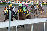 Jockey Luis Saez and Wildcat Red outduel General a Rod to the wire in the Fountain of Youth(G2) at Gulfstream Park, Hallandale Beach Florida. 02-22-2014