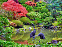 Sculpture and pond with fall color. Portland Japanese Gardens. Oregon