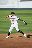 Great Falls Voyagers shortstop Lency Delgado (12) throws to first base during a Pioneer League game against the Missoula Osprey at Centene Stadium at Legion Park on August 19, 2019 in Great Falls, Montana. Missoula defeated Great Falls 4-1 in the first game of a doubleheader. Games were moved from Missoula after Ogren Park at Allegiance Field, the Osprey's home field, was ruled unplayable. (Zachary Lucy/Four Seam Images)