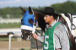 September 1, 2014: Smarty Jones Stakes contender Grasshoppin enters the paddock. Protonico, Joe Bravo up, wins the grade 3 Smarty Jones Stakes at Parx Racing in Bensalem, PA. Trainer is Todd Pletcher. Owner is International Equities Holding, Inc. ©Joan Fairman Kanes/ESW/CSM