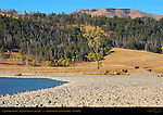Lamar Riverbank, Lamar Valley in Autumn, Yellowstone National Park, Wyoming