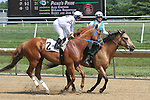 July 12, 2014: Avarice, Javier Castellano up, takes part in the post parade before the Fort Delaware Stakes. Avarice wins the Fort Delaware Stakes after first-place finisher Picko's Pride is disqualified to last for interference at Delaware Park in Stanton Delaware. Avarice's trainer is John Robb; owners are John Robb and Herman Braude. ©Joan Fairman Kanes/ESW/CSM