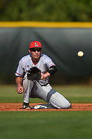Ball State Cardinals shortstop Alex Maloney (6) during a game against the Dartmouth Big Green on March 7, 2015 at North Charlotte Regional Park in Port Charlotte, Florida.  Ball State defeated Dartmouth 7-4.  (Mike Janes/Four Seam Images)