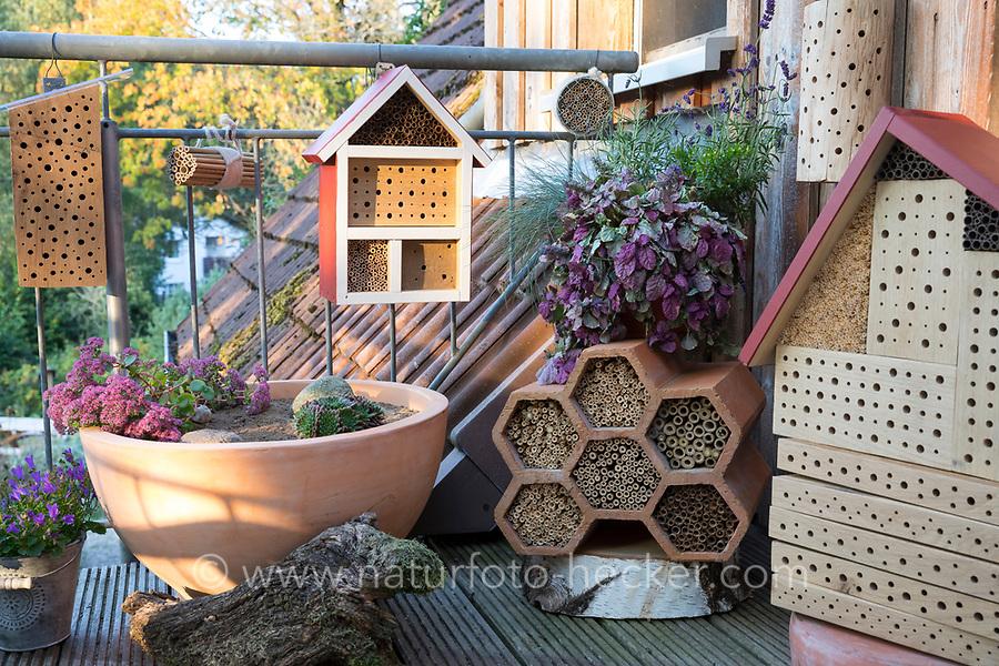 Wildbienen-Nisthilfen auf einem Balkon, Terrasse, Dachterrasse, Balkonsituation. Harthiolz mit verschiedenen Bohrlöchern, Mini-Sandarium, Schilfröhrchen, Bambus, Bambusröhren und andere. Wildbienen-Nisthilfen, Wildbienen-Nisthilfe selbermachen, selber machen, Wildbienenhotel, Insektenhotel, Wildbienen-Hotel, Insekten-Hotel, Wildbienenstation, Wildbienen-Station