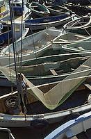 Europe/France/Poitou-Charentes/17/Charente Maritime/Ile d'Oléron/Le Chateau-d'Oléron: Pêcheur au carrelet