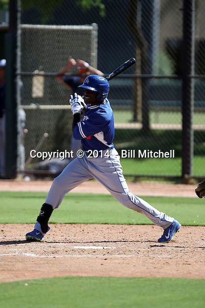 Devan Ahart - 2014 AIL Dodgers (Bill Mitchell)
