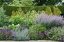 Mixed herbaceous border containing Cephalaria gigantea, Cardoons, Nepeta, Geraniums and Salvia, Town Place, late June.