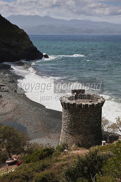 Europe/France/Corse/2B/Haute-Corse/Cap Corse/Olmeta-di-Capocorso: Tour génoise à la Marine de Negru