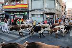 Participants run in front of El Estoque's bulls during the bull run of the San Sebastian de los Reyes Festival, near Madrid, on august 30, 2014. © Pedro ARMESTRE
