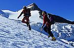Montée sur le glacier Hohbalm