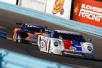 #59 Brumos Porsche/FabCar and #60 Michael Shank Racing Lexus/Riley of Oswaldo Negri & Mark Patterson