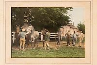 Europe/France/Normandie/Basse-Normandie/14/Calvados/Deauville: Scènes de courses équestres à la villa Strassburger - [Mention obligatoire]