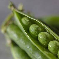 Gastronomie: Petit pois bios / Gastronomy: Organic peas - Stylisme : Valérie LHOMME