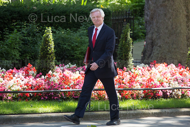 David Davis MP (Secretary of State for Exiting the European Union).<br />