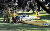 Harrison Ford Airplane Crash