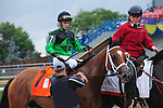 Toronto, ON - September  17:  The Pizza Man, #7, ridden by Flavien Prat  makes his way to the winner's circle at the Northern Dancer Turf  Stakes  at Woodbine Race Course on September 17, 2016 in Toronto, Ontario. (Photo by Sophia Shore/Eclipse Sportswire/Getty Images)