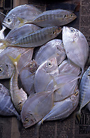 Asie/Malaisie/Bornéo/Sabah/Kota Kinabalu: Détail d'un étal de poissons sur le marché Tuarav