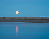Full moonset over Haast beach, UNESCO World Heritage Area, South Westland, New Zealand, NZ