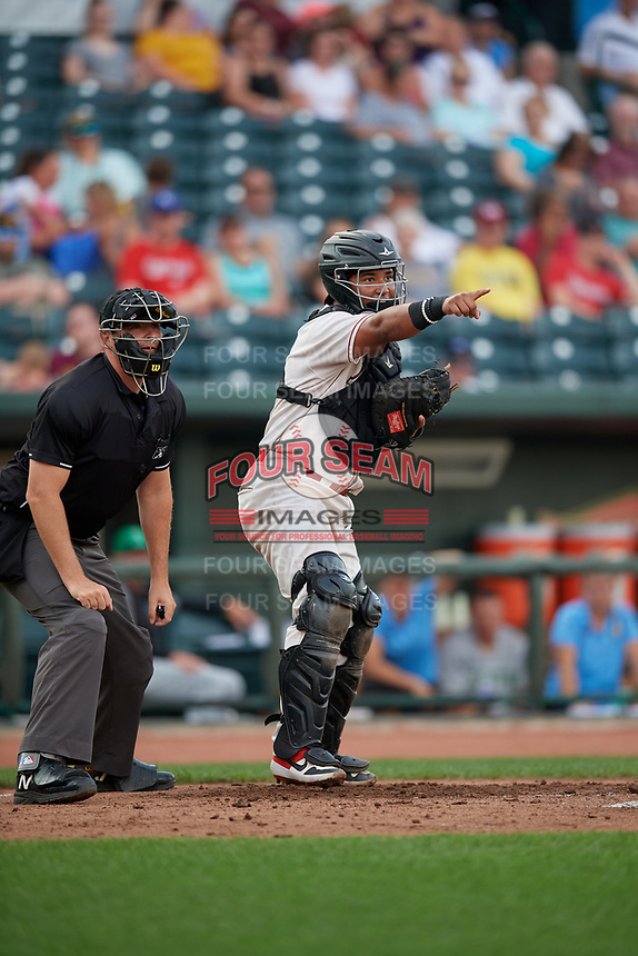 Great Lakes Loons catcher Jair Camargo (21) points to the first base umpire for a call during a Midwest League game against the Clinton LumberKings on July 19, 2019 at Dow Diamond in Midland, Michigan.  Clinton defeated Great Lakes 3-2.  (Mike Janes/Four Seam Images)