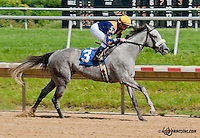 Welcome Guest winning at Delaware Park on 6/19/13
