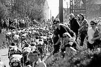 peloton rolling over the Holleweg cobbles<br /> <br /> <br /> 101th Ronde Van Vlaanderen 2017 (1.UWT)<br /> 1day race: Antwerp › Oudenaarde - BEL (260km)