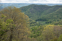 Cranberry Hill, West Virginia. Spring View from Cranberry Mountain Scenic Point.