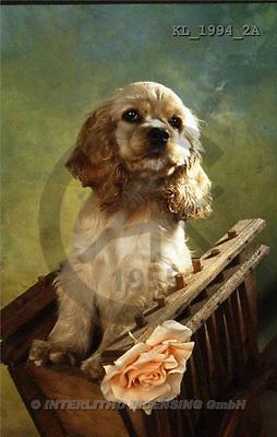 Interlitho, Alberto, ANIMALS, dogs, photos, dog, case(KL1994/2A,#A#) Hunde, perros